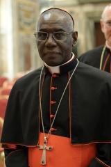 cardinal-guineen-Robert-Sarah-renonciation-acceptee-Francois_0_730_1095.jpg
